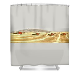 Four Headed In 7013 Shower Curtain