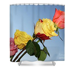 Shower Curtain featuring the photograph Four Roses by Elvira Ladocki