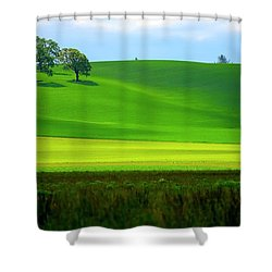 Four Trees On Livermore Road Shower Curtain