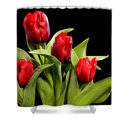 Four Tulips Shower Curtain