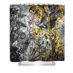 Four Wheel Driving Through Time Shower Curtain