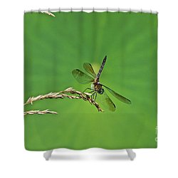 Four-winged Interceptor Shower Curtain by Byron Varvarigos