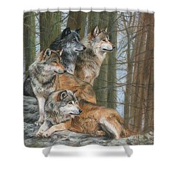 Shower Curtain featuring the painting Four Wolves by David Stribbling