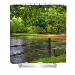 Shower Curtain featuring the digital art Fourth Street Flood by Sharon Batdorf