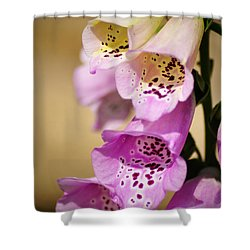 Fox Gloves Shower Curtain by Bill Cannon