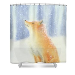 Fox In The Snow Shower Curtain by Taylan Apukovska