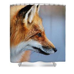 Fox Profile Shower Curtain by Mircea Costina Photography