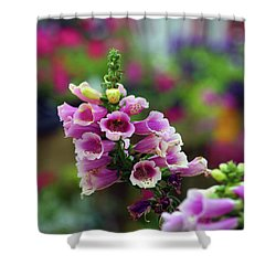 Foxglove 1154 H_2 Shower Curtain