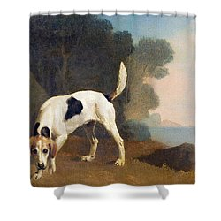 Foxhound On The Scent Shower Curtain by George Stubbs