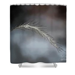 Shower Curtain featuring the photograph Foxtail - Abstract Art by Kerri Farley