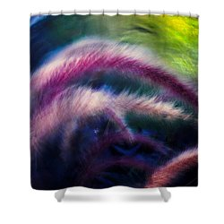 Shower Curtain featuring the photograph Foxtails In Shadows by Rikk Flohr