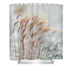 Foxtails Shower Curtain