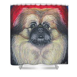 Shower Curtain featuring the pastel Fozy Bear Pekingese by Ania M Milo