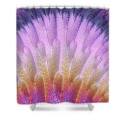 Fractal Feather Fan Shower Curtain
