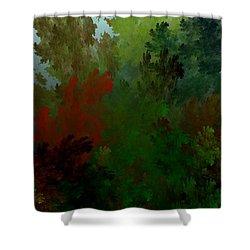 Fractal Landscape 11-21-09 Shower Curtain by David Lane