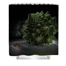 Fractal Supper Shower Curtain