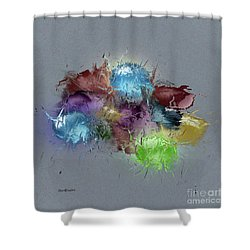 Fractured Bouqet 1 Pc Shower Curtain