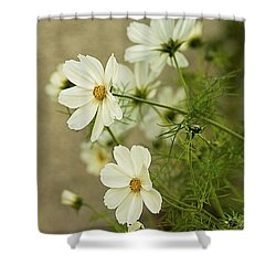 Fragile Cosmos Shower Curtain