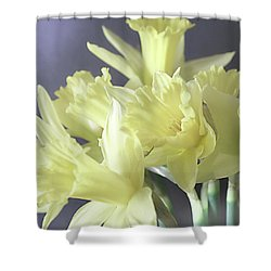 Fragile Daffodils Shower Curtain by Jacqi Elmslie
