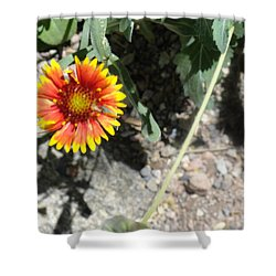 Fragile Floral Life On The Trail Shower Curtain