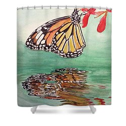 Fragile Reflection Shower Curtain by Annie Poitras