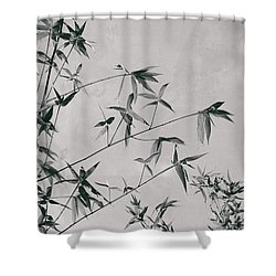 Shower Curtain featuring the photograph Fragility And Strength by Linda Lees