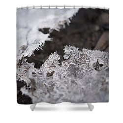 Fragmented Ice Shower Curtain