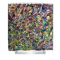 Shower Curtain featuring the painting Fragmented Spring by James W Johnson