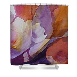 Fragments Shower Curtain by Donna Acheson-Juillet