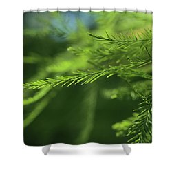 Shower Curtain featuring the photograph Fragments Of Time  by Connie Handscomb