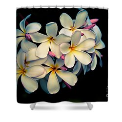 Shower Curtain featuring the photograph Fragrance by Kelly Wade