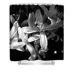 Fragrance Shower Curtain by Mary Ellen Frazee