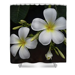 Shower Curtain featuring the photograph Fragrance Of Hawaii by Pamela Walton