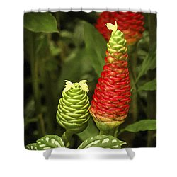 Fragrant Red Shower Curtain by Carolyn Marshall