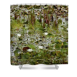 Shower Curtain featuring the photograph Fragrant White by Susan Cole Kelly