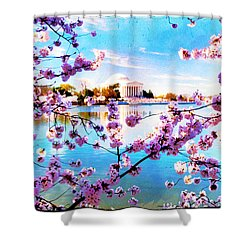 Shower Curtain featuring the photograph Framed  by Edward Kreis