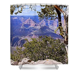 Framed View - Grand Canyon Shower Curtain by Larry Ricker