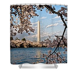 Framed With Blossoms Shower Curtain by Christopher Holmes