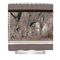 Framing Tangled Dunescape Shower Curtain by Ann Horn