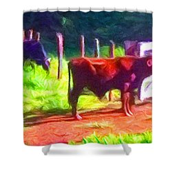 Franca Cattle 2 Shower Curtain