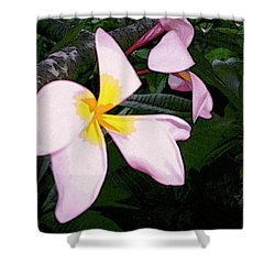 Shower Curtain featuring the digital art Frangipani Moment by Winsome Gunning