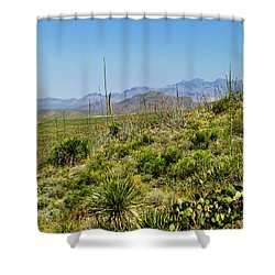 Franklin Mountains State Park Facing North Shower Curtain by Allen Sheffield