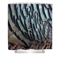 Shower Curtain featuring the photograph Franklin's Choice by Tony Beck