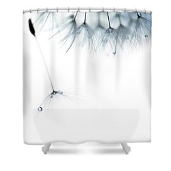 Free Fall Shower Curtain by Rebecca Cozart