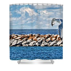 Free Flight Shower Curtain