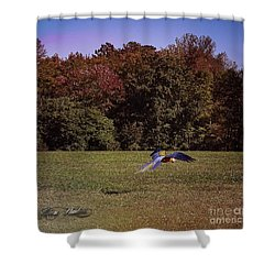 Free Flighted Macaw Shower Curtain