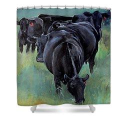 Free Range Cow Girls Shower Curtain