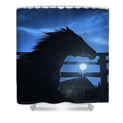 Free Spirit Horse Shower Curtain