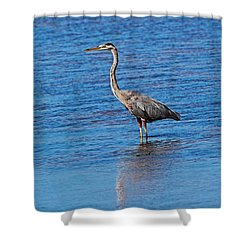 Shower Curtain featuring the photograph Free Spirit by Michiale Schneider