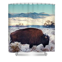 Free To Roam Shower Curtain by John De Bord